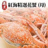 每隻83元起【海肉管家-全省免運】斯里蘭卡母花蟹X5隻 (每隻150G-200G)