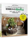 玻璃瓶中的植物星球以苔蘚.空氣鳳梨.多肉.觀葉植物打造微景觀生態花園