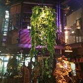 吊燈 音樂酒館仿真綠植主題餐廳酒吧卡座過道小 【現貨快出】YJT