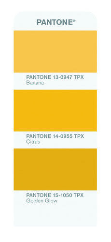 PANTONE Color guide 服裝和家居色彩指南2015最新版*FGP100