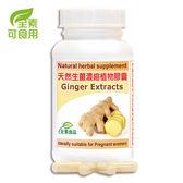 赫而司 Kemin 天然生薑精華Ginger濃縮植物膠囊 60顆/罐