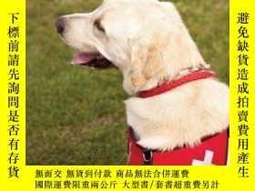 二手書博民逛書店Dogs罕見to the Rescue: Inspirational Stories of Four-Footed