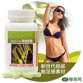 【赫而司】海玲瓏超級褐藻纖維膠囊(60顆/罐)超級新纖飽足褐藻