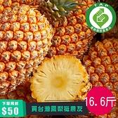 (產銷履歷)銀獅金鑽鳳梨16.6台斤含運組