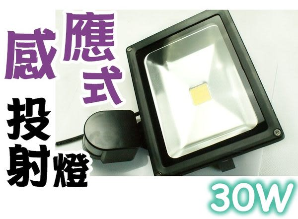 LED 紅外線 感應式投射燈 30W (白光/暖白光) 110-220V 全電壓 戶外/庭院燈 防盜 節能