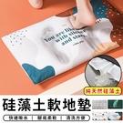 【台灣現貨 C029】 珪藻土地墊 珪藻...