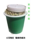 自長生種綠豆芽罐