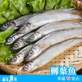 【台北魚市】 柳葉魚 480g以上 (包冰率10%)