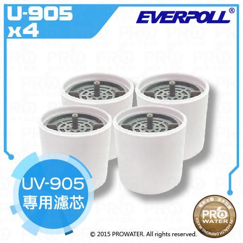 【水達人】愛惠浦科技 EVERPOLL ~ E.P淨Water UV-905生飲隨身瓶專用濾芯( U-905-4)(4入裝)