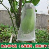 水果防蟲袋防鳥網袋10個瓜果防果蠅套袋尼龍網袋浸種子袋