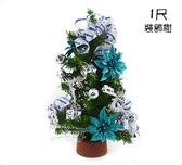 聖誕樹一尺裝飾樹,聖誕節/聖誕佈置/桌上型聖誕樹/聖誕裝飾【X877680】節慶王