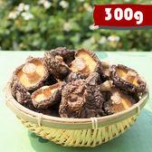 新社香菇 (中菇-300g) 全館免運 [菇見幸福]