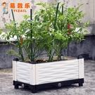 種植箱 易栽樂3.1代蔬菜種植箱陽台種菜家用30cm寬加厚種菜盆長方形花盆 3C優購HM
