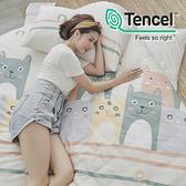 #HT033#絲柔親膚奧地利TENCEL天絲6尺雙人加大床包+枕套三件組(不含被套)台灣製/萊賽爾Lyocell