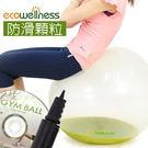 PVC水晶韻律球(附打氣筒)60cm顆粒瑜珈球健身球彈力球彼拉提斯球專賣店【ecowellness】