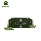 韓國 Enblanc 極柔純水有蓋攜帶裝濕紙巾-仙人掌萃取物32抽