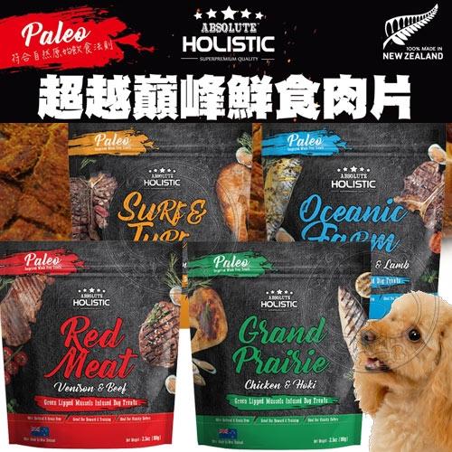 【培菓平價寵物網】ABSOLUTE HOLISIC超越巔峰》鮮食肉片飼料狗糧-100g