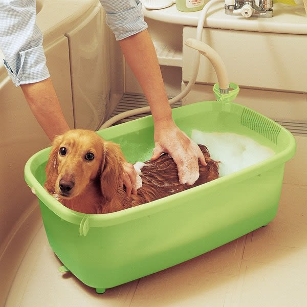 *WANG*IRIS寵物澡盆BO-800E 綠色/橙色可掛蓮蓬頭吹風機的浴盆