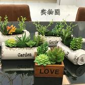 多肉盆栽客餐桌飾品假花小擺件