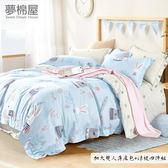 3M專利+頂級天絲-床高35cm內可用-加大薄床包+5x6.5尺涼被四件組-守望-夢棉屋