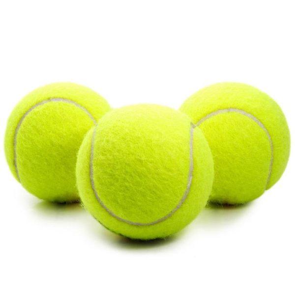 狗狗玩具球金毛泰迪彈力球耐咬磨牙網球寵物幼犬拉布拉多小狗訓練【全館免運】