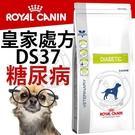 【培菓寵物48H出貨】皇家處方》犬用DS37糖尿病處方食品-1.5kg