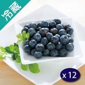 秘魯藍莓(125g±5%/盒)12盒/箱【愛買冷藏】