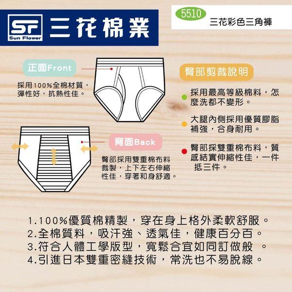 Sun Flower 三花全棉彩色三角褲