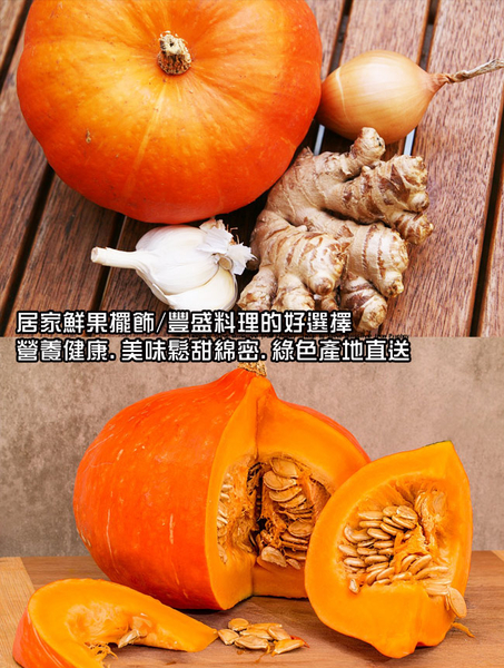 果之家 萬聖節特賣東昇南瓜12顆組合(單顆約1.5公斤)
