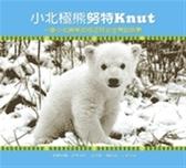 (二手書)小北極熊努特:一隻小北極熊如何征服全世界的故事
