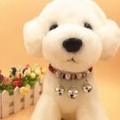 可愛小型犬幼犬脖圈