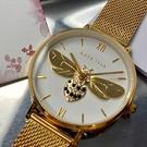 星晴錶業-ANTE ISLA法式風情女錶,編號AI00002,32mm金色錶殼,金色錶帶款