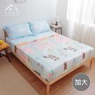 【青鳥家居】吸濕排汗頂級天絲三件式床包枕套組-小熊派對(加大)