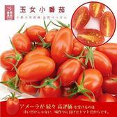 【果之蔬-全省免運】玉女溫室小蕃(番)茄 爆甜多汁薄皮x5盒(300g±10%含盒重/盒)