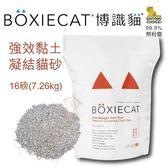 *WANG*【X3包免運】美國頂級 BOXIECAT《博識貓/益生菌強效黏土凝結貓砂》16磅(7.26kg)