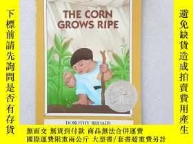 二手書博民逛書店THE罕見CORN GROWS RIPE(英文原版)Y11016 Dorothy Rhoads Puffin
