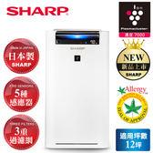 【SHARP 夏普】 日本進口12坪自動除菌離子清淨機 KC-JH50T-W