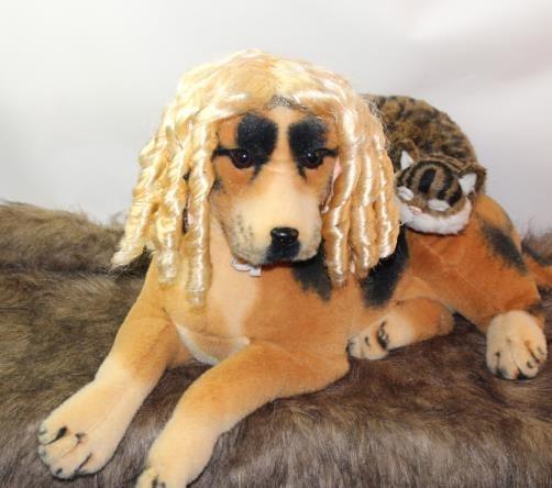 寵物假髮 寵物搞笑頭飾帽子狗狗頭套可愛搞怪頭套貓拍照攝影道具拍快手假發-快速出貨