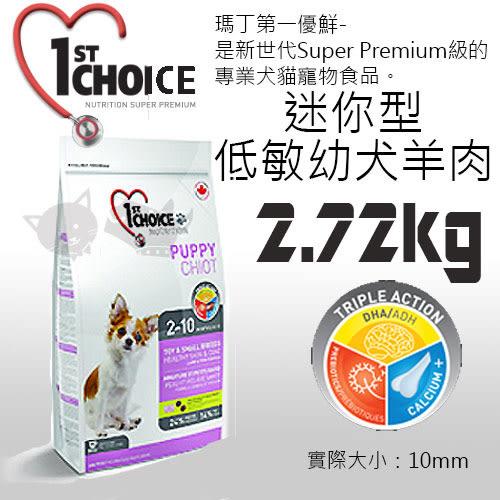 [寵樂子]《瑪丁-第一優鮮》迷你型犬低敏幼犬羊肉 2.72KG