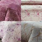 60支精梳棉 雙人薄被套6x7尺 雙面同一花色 台灣精製 ~花色同主商品