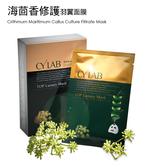 CYLAB 海茴香修護羽翼面膜 5+1片 台灣製造MIT 送禮 修護 撫紋 輕薄 服貼