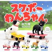 全套5款【日本正版】滑板法鬥 扭蛋 轉蛋 法鬥犬 滑板狗狗 KITAN 奇譚 - 302124