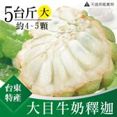 台東特產 特級大目牛奶釋迦5斤(大4~5粒)