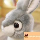 小寵物兔子小白兔毛絨玩具兔玩偶禮物公仔可愛兔【小獅子】