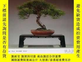 二手書博民逛書店Very罕見Rare ! The 85rd Bonsai Exhibition book from japan j