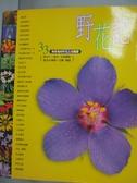 【書寶二手書T9/動植物_YGE】野花記-33個有趣的野花主題觀察_張永仁