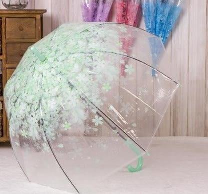 協貿國際 櫻花唯美長柄傘 創意環保PVC透明晴雨傘