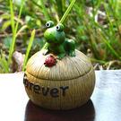 蝸牛青蛙烏龜毛毛蟲有蓋煙灰缸 創意樹脂煙...