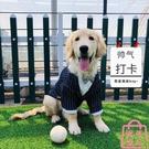 寵物服狗狗西裝禮服大型犬結婚西服衣服夏季薄款【匯美優品】