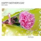 【母親節商品】$15/支 康乃馨香皂花 (30支)(母親 玫瑰花束 手工皂 鮮花束) ht-0130